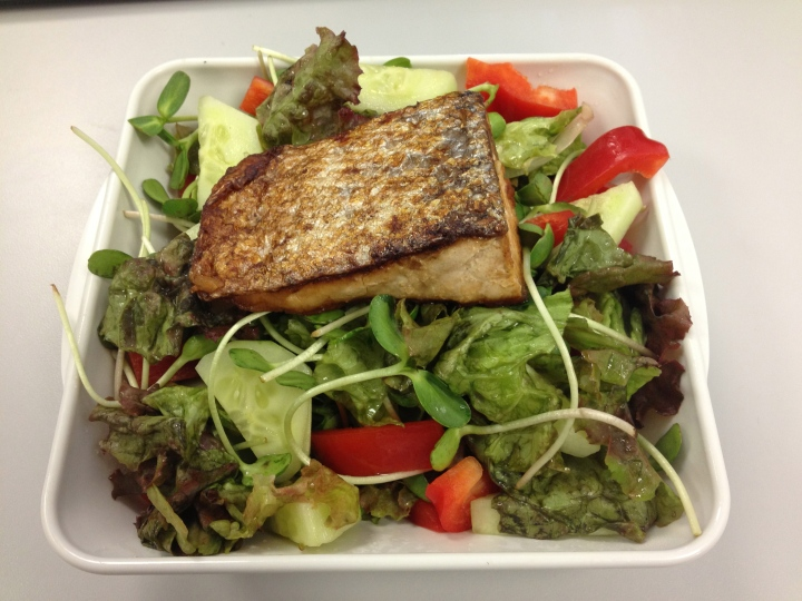 Salmon with Red Leaf Lettuce, Cucumber and Red Pepper